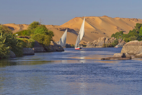 Feluccas on the nile Aswan