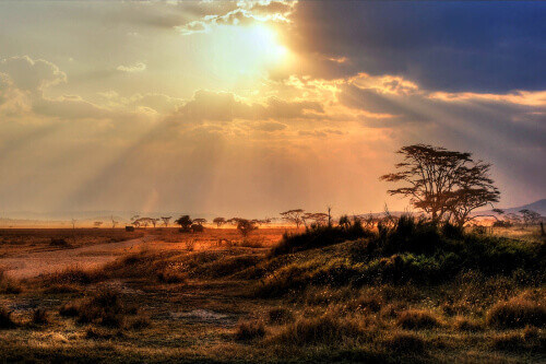 Gorgeous sunset with sunbeams at Chobe National Park in Botswana South Africa