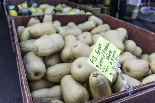 Butternut Squash on sale at a Farmers Market in Calgary Alberta Canada