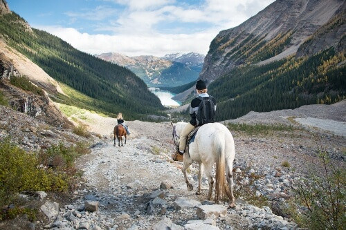 Horseback riding to Plain of Six Glaciers, Lake Louise and Banff National Park in Alberta Canada