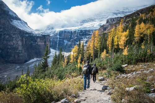 Tourists Hiking at Plain of Six Glaciers from Lake Louise, Banff National Park, Canada