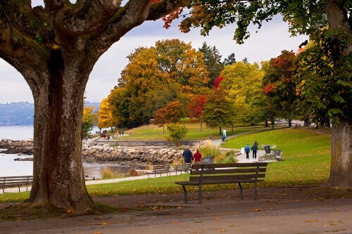 People enjoying an autumn day in Stanley Park in Vancouver British Columbia, Canada
