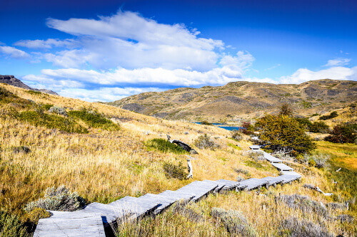 Autumn steppe landscape in Patagonia with Lago el Toro in Torres del Paine Chile
