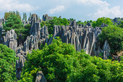 Kistler of the Shilin or the Stone Forests scenic spot in Kunming Yunnan Province in China