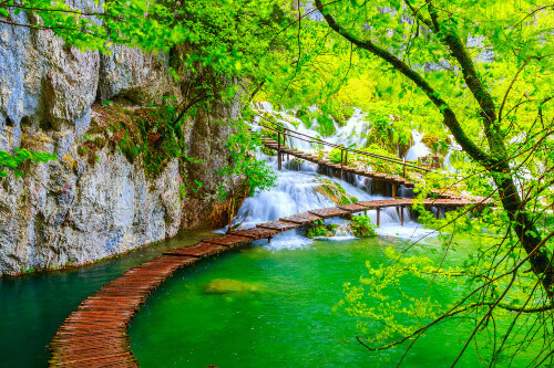 Wooden path with mossy waters and beautiful trees in Plitvice National Park in Croatia