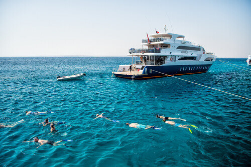 Group of people adults and children with diving masks and snorkelling in Hurghada Egypt