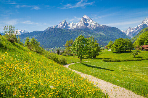 Idyllic summer landscape in the Alps with fresh green mountain pastures in Bavaria Germany