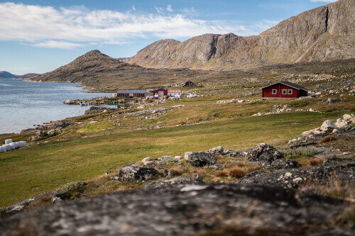 Quiet day in Kangerluaarsorujuk in a sheep herders place in South Greenland