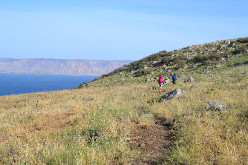 Group of hikers hiking Jesus trail with the beautiful view of Mt. Arbel in countryside of Galilee, Sea of Galilee, Israel