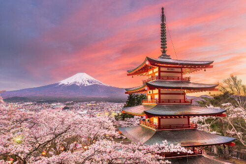 View of Mt. Fuji and pagoda in spring season with cherry blossoms at dusk in Fujiyoshida, Japan