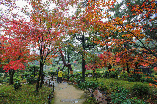 Shukkeien Japanese Garden Park in autumn with maple leaves at Hiroshima, Japan