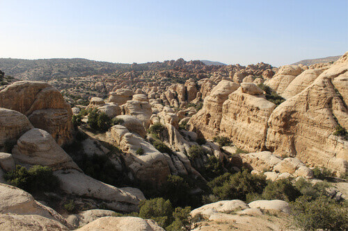 Beautiful rock formations with a lot of green plants and trees in Dana Biosphere Reserve in Jordan