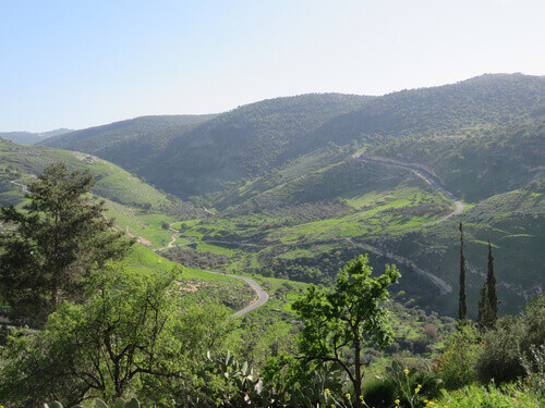 A very beautiful place in spring field color turns into lush green and forests in Ajloun Jordan
