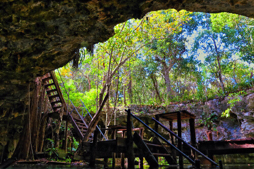Wooden staircase in the cave entrance of Gran Cenote in Cancun Mexico