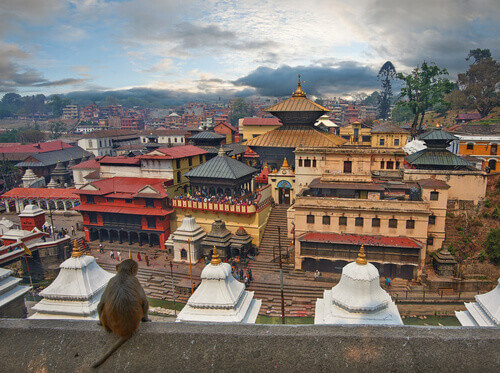 Pashupatinath Temple is one of the most significant Hindu temples of Lord Shiva in the world located in Kathmandu Nepal