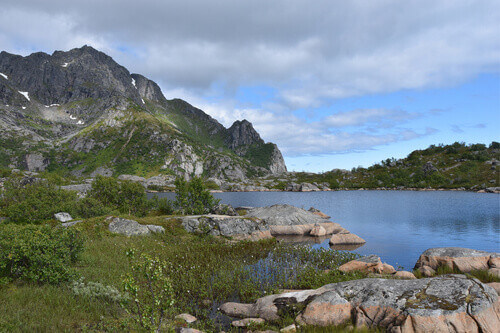 Summer scenery along the hiking path near Henningsvaer Lofoten Islands Norway