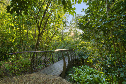 The new tree top canopy walk is a tourist favourite in Kirstenbosch National Botanical Garden in Cape Town South Africa