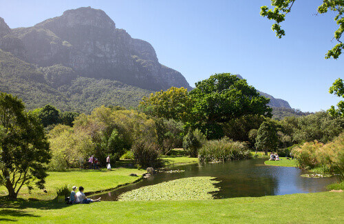 Visitors relaxing in Kirstenbosch National Botanical Garden in South Africa