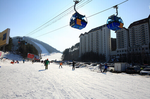 People are enjoying skiing on the ski slopes of the Yongpyong Resort in South Korea