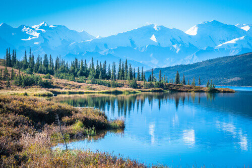 Denali National Park and Wonder lake with Mountain Background in Alaska