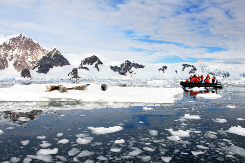 inflatable boat full of tourists antarctica