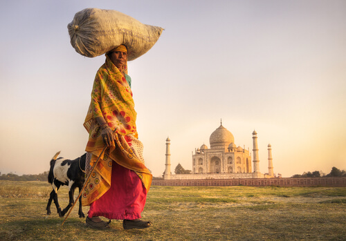 Indian woman with goat and Taj Mahal in distance