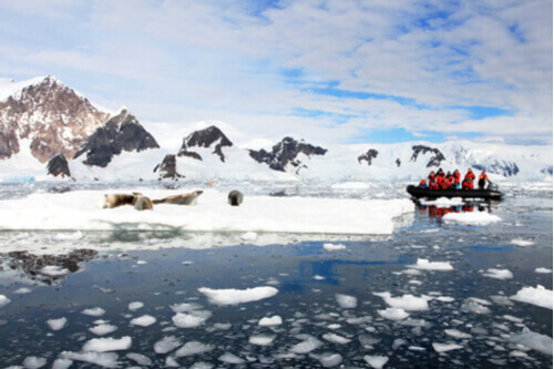 Tourists on zodiac in antarctica